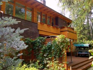 Продажа дома Московская область, Одинцовский р-н, д. Бородки, ул. Лесной ручей-3, фото 1