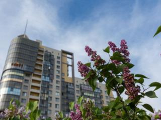 Продажа квартир: 1-комнатная квартира в новостройке, Санкт-Петербург, ул. Адмирала Трибуца, 10, фото 1