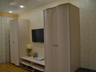 Продажа квартир: 1-комнатная квартира, Краснодарский край, Сочи, Пластунская ул., фото 1
