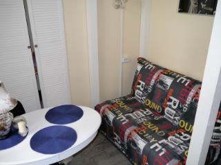 Аренда квартир: 1-комнатная квартира, Москва, Балаклавский пр-кт, 3, фото 1